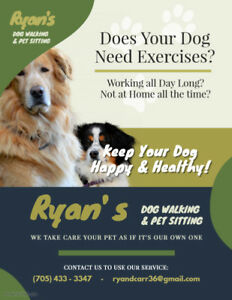 NEED A PET SITTER ? OR SOMEONE TO WALK YOUR DOG? OR BOARDING ?