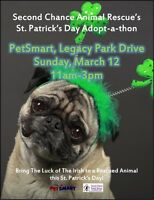 Second Chance Animal Rescue Adoption Event