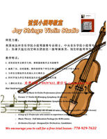Professional violin lessons and piano beginner lessons