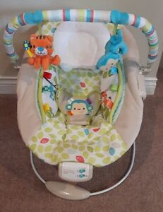 Comfort And Harmony Bouncer