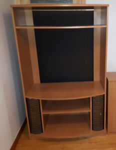 television cabinet with DVD storage