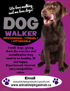 Pet Sitter and Dog Walker Available