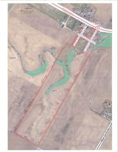 46.49 Acres for Sale in Bervie