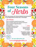 Four Seasons of Herbs:  Courses in Natural & Herbal Medicine