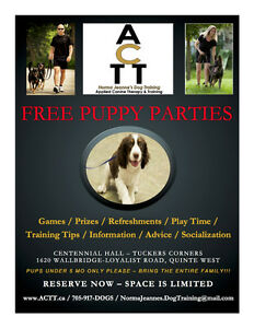 FREE PUPPY PARTY