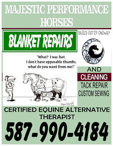 Blanket repairs and equine certified therapist