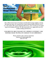 Dees Professional Green Cleaning