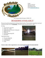 Boarding Available located just outside of London