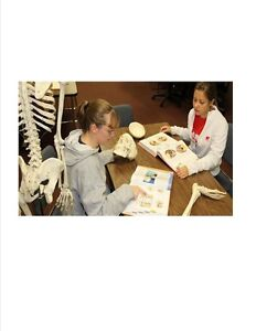 NCLEX- RN and RPN  EXAM REVIEW London Ontario image 1