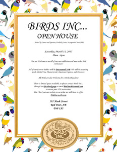 Birds Inc is a full line exotic aviary  haveing a Open House
