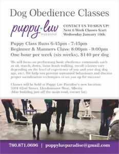 OBEDIENCE CLASSES BEGIN ASAP!  Don't Miss Out!