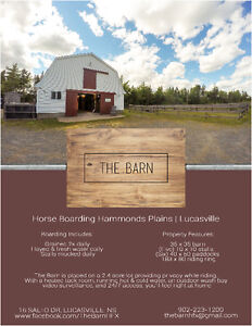Horse Boarding Lucasville / Hammonds Plains Available Now