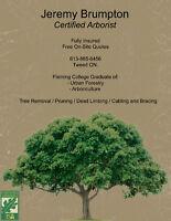 Tree Service / Arborist Work