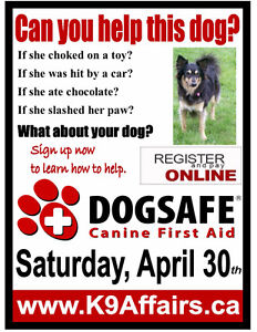 Aprili 30th - DOGSAFE Canine First Aid course
