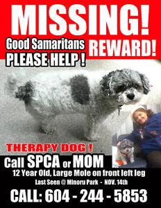 Good SAMARITANS - PLEASE HELP!