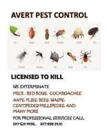 Wasps, mice, rat, Roaches, bed bugs etc 647 898 2430