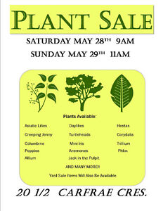 Plant Sale in Old South