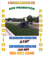 SOD PROMOTION & LAWN CARE PROMOTION ACT NOW