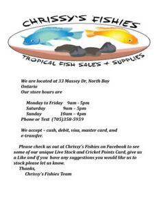 Chrissy's Fishies Tropical Fish Sales and Supplies