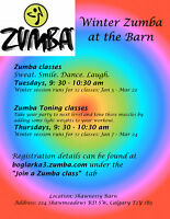 Zumba classes in Shawnessy