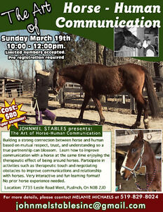 Learn about Equine communication!