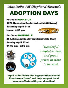 ADOPTION DAY EVENTS THIS WEEKEND!