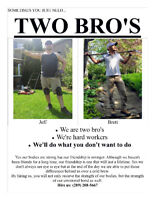 Yard clean-ups and landscape projects