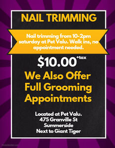 Nail Trimming No Appointment Needed!