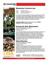 Beekeeping Courses - Introduction/Pest Management/Queen Rearing