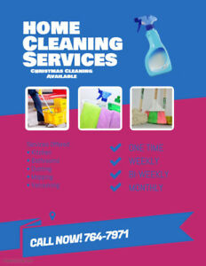 Cleaninglady Available