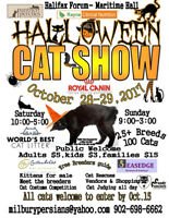 The Great Annual Halifax Halloween Cat Show