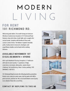 ONE BEDROOM CONDO AT 101 RICHMOND RD // HEART OF WESTBORO