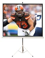 SUPERBOWL!!! Large TV and Projector, Screen Rentals
