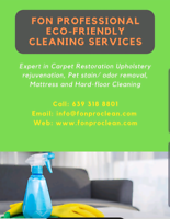 FON professional cleaning services