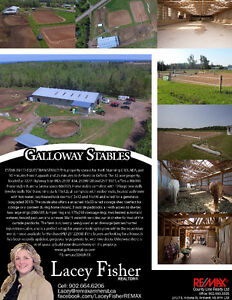ESTABLISHED EQUESTRIAN STABLE