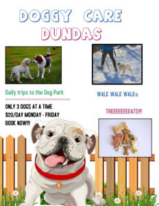 DOG DAY CARE- IN HOME- DUNDAS -DOWNTOWN