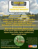 Open Barn & Country Market with the Alpacas