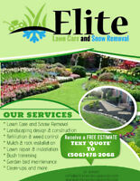 Lawn Care and Repair Experts