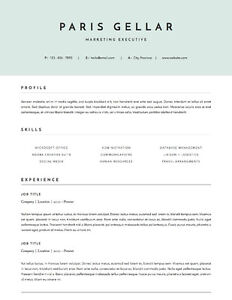 Stop blending in! Designer RESUMES, any budget Prince George British Columbia image 2