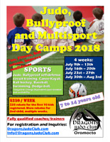 Judo, Bullyproof and Multisport Summer Camp