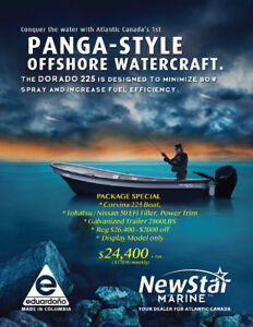 Touchest Fishing Boat in the World - Panga-Style Work Boat-NS