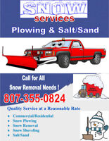 Snowplowing & Removal Services (Commercial/Residential)