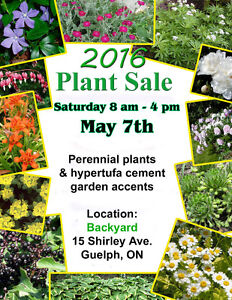 PERENNIAL PLANT SALE @ 15 Shirley Ave.