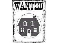 3 / 4 Bedroom Rental Wanted