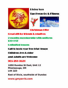 TAE KWON DO LESSONS RISING SUN CHRISTMAS OFFER