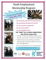 Youth Employment Mentorship Program