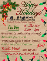 Nickweb Equine Assisted Learning Christmas Fun Day