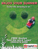 Affordable Lawn Care and Maintenance