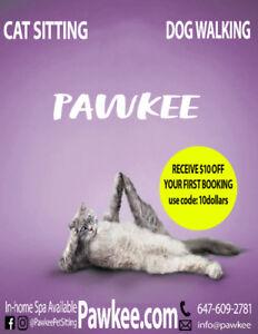 Cat sitting , Cat sitter, Pet sitter,Cat care & more Pawkee.com