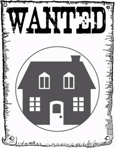 Urgent - Looking for an apartment for mid october in KW